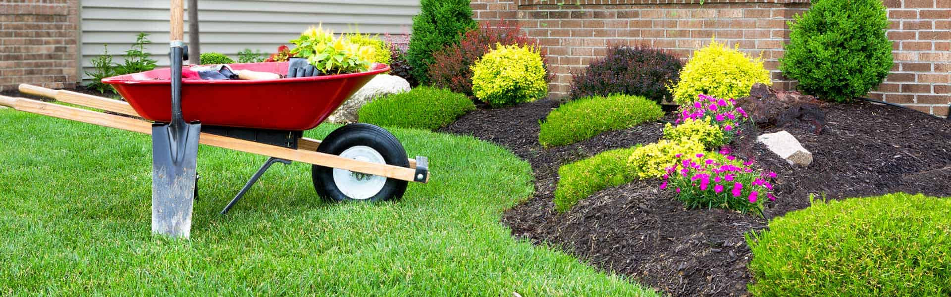 Get the best gardening help because we have the experience!
